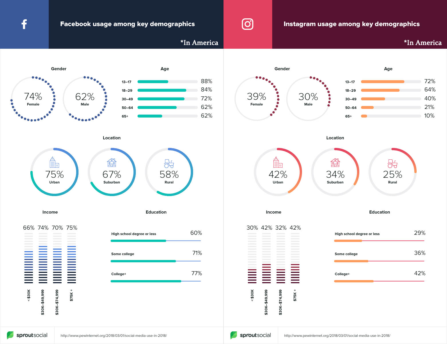 Instagram and Facebook demographics overview in America