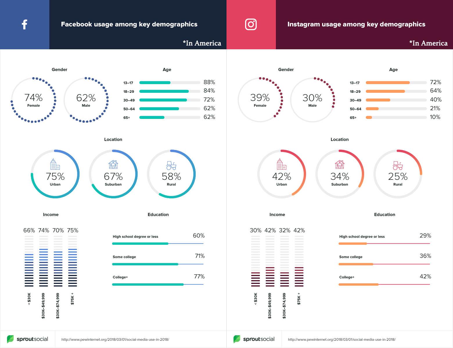 Instagram and Facebook demographics overview in America